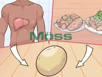 Gan giúp hấp thu Cholesterol