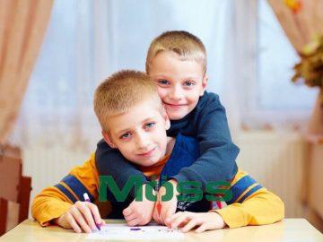 nghiên cứu cơ hội cho trẻ tự kỷ phát triển