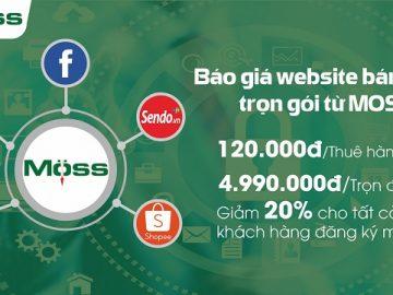 khuyen-mai-thue-thiet-ke-website-techmoss
