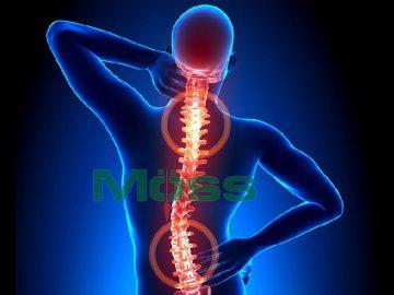 Nghiên cứu mới sẽ giúp ích cho các điều trị xương khớp