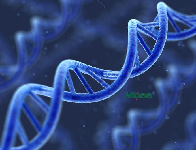 Giải mã bộ gen giúp điều trị nhiều bệnh