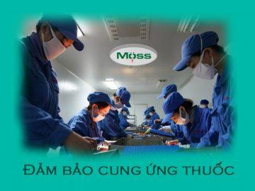 featured-cuc-quan-ly-duoc-dam-bao-cung-ung-thuoc-tech-moss