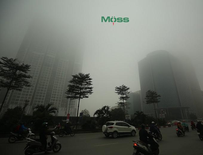 Ô nhiễm môi trường ảnh hưởng đến cân nặng và sức khỏe