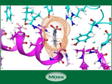 sieu-may-tinh-tim-thuoc-dieu-tri-coronavirus-tech-moss