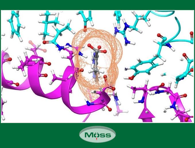 Các liên kết trong hợp chất được mô phỏng