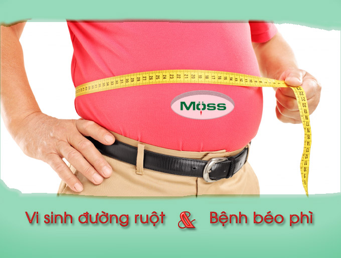 Vi sinh đường ruột liên hệ mật thiết với bệnh béo phì