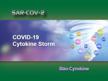 bao-cytokine-va-covid-19-tech-moss