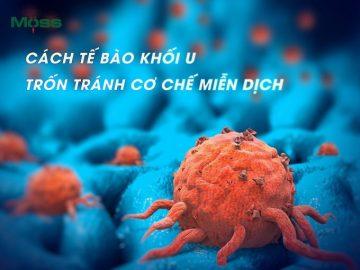 te-bao-khoi-u-tron-tranh-co-che-mien-dic-tech-moss